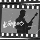 Broken (feat. Teesy)/The Bamboos
