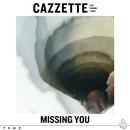 Missing You (feat. Parson James)/Cazzette