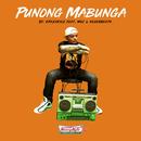 Punong Mabunga (feat. Maj & Sevenbeats)/Krazykyle