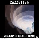 Missing You (feat. Parson James) [Dexter Remix]/Cazzette
