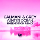 Winter Ocean (Theemotion Remix)/Calmani & Grey