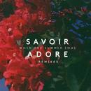 When the Summer Ends (Remixes)/Savoir Adore