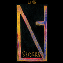 Spiders/Lung