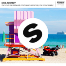 The Love You Bring Me (feat. Maiko Spencer) [Joe Stone Remix]/Carl Kennedy