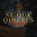 Sé Que Quieres (feat. Brytiago, Jon Z & Almighty) [Remix]/De La Ghetto