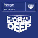 After The Party (feat. Blu)/Audiowhores