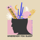 Wherever You Sleep/Bay Ledges