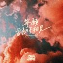 Wish We Never Met (Acoustic Version)/Dear Jane