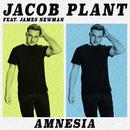 Amnesia (feat. James Newman)/Jacob Plant