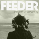 Dove Grey Sands (Acoustic Version)/Feeder