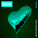 Don't Leave Me Alone (feat. Anne-Marie) [Acoustic]/David Guetta