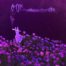 A-OK (Everything's Perfect)/Terror Jr