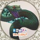 Designer/Hamza