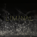 Liminal 2/Various Artists