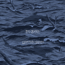 Certainty Waves/The Dodos