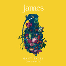Many Faces (Live at Victoria Theatre, 2018)/James