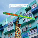 Walk Alone (feat. Tom Walker)/Rudimental