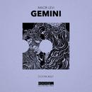 Gemini/Maor Levi