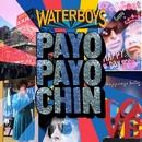 Payo Payo Chin/The Waterboys