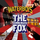 The Connemara Fox/The Waterboys
