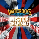 Mister Charisma/The Waterboys