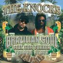 Brazilian Soul (feat. Sofi Tukker) [FTampa Remix]/The Knocks