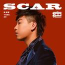 SCAR/Tiger Hu