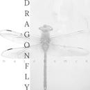 Dragonfly/Maja Koman