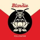 Pollinator/Blondie