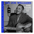 Baby Please Don't Go/Big Joe Williams