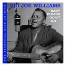 Baby Please Don't Go/Big Joe Williams
