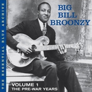 Vol. 1: The Pre-War Years/Big Bill Broonzy