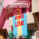 Scared of Love (feat. RAY BLK & Stefflon Don) [Preditah Remix]/Rudimental