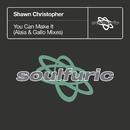 You Can Make It (Alaia & Gallo Mixes)/Shawn Christopher