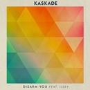 Disarm You (feat. Ilsey)/Kaskade
