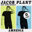 Amnesia (feat. James Newman) [Majestic Remix]/Jacob Plant