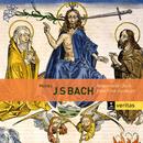 Bach: Motets BWV 225-231, Cantatas BWV 50 & 118/John Eliot Gardiner