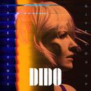 Give You Up (Laibert Remix)/Dido