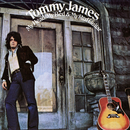 My Head, My Bed & My Red Guitar/Tommy James