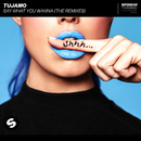 Say What You Wanna (The Remixes)/Tujamo