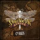 Guns, Gold & Guitars/Billy Ray Cyrus