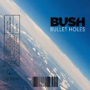 Bullet Holes/Bush