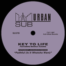Faithful (Is It Whatcha Want) [feat. Monica Hughes] [Peppermint Jam/Elusive Remixes]/Key To Life