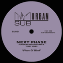 Piece Of Mind (feat. Helen Bruner & Terry Jones)/Next Phase