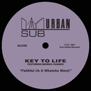 Faithful (Is It Whatcha Want) [feat. Monica Hughes]/Key To Life