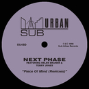 Piece Of Mind (Remixes) [feat. Helen Bruner & Terry Jones]/Next Phase