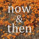 Now & Then/Lily Kershaw
