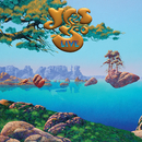 Yes 50 Live/Yes