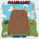 Sweater/Pandamic