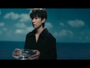 Tender/Roy Wang